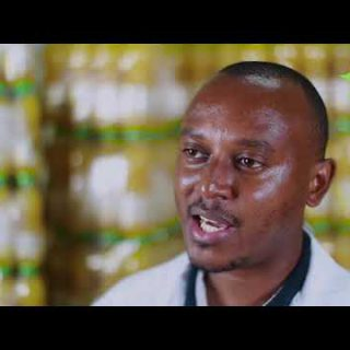 Watch how mangoes from Machakos are being converted to Fruit Burst juice by Raw Valley